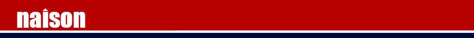 Naison Logo Header 1230 x 100